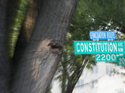 Digital Art - Constitution Ave 2200 by Angelia Hodges Clay