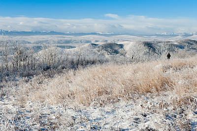 Contemplating Frosty Foothills  Art Print