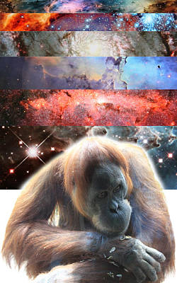 Orangutan Digital Art - Contemplating Multiple Universes by John Lautermilch