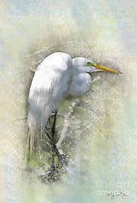 Egret Watercolor Photograph - Contemplation by Betty LaRue