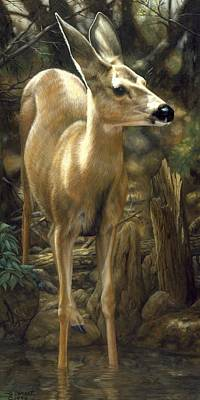 Mule Deer Fawn Painting - Mule Deer - Contemplation by Crista Forest
