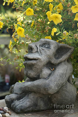 Photograph - Contemplative Troll by John  Mitchell