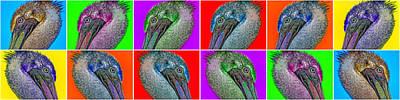 Animals Photos - Contemporary Pelicans by Betsy Knapp