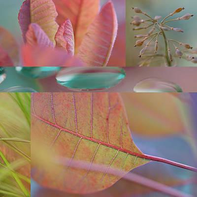 Continus Collage Art Print