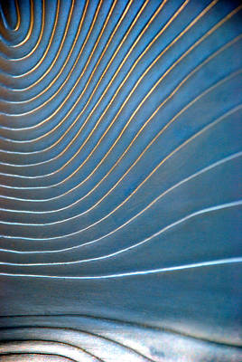 Photograph - Contours 1 by Wendy Wilton