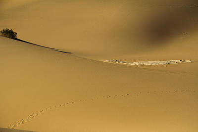 Photograph - Contours Of Solitude by Kunal Mehra