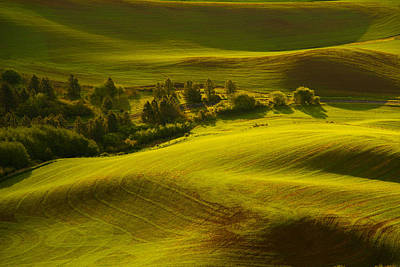 Contours Of The Palouse Art Print