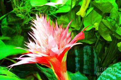 Indoor Plants Digital Art - Spiked Pink Delight  by Luther Fine Art