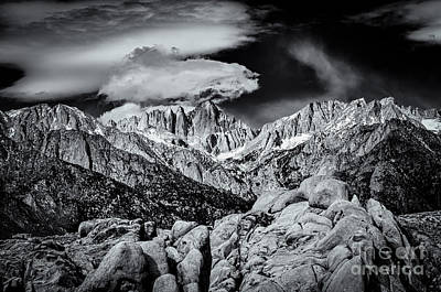 Alabama Hills Photograph - Contrasting Elements by Jennifer Magallon