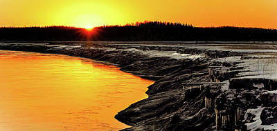 Alaska Photograph - Contrasts In Nature by Ron Day