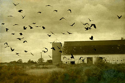 Flock Of Bird Photograph - Converged by Gothicrow Images