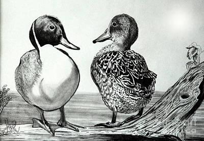 Drawing - Conversation Between Ducks by Cheryl Poland