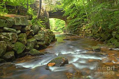 Photograph - Cook Forest Stream Under The Bridge by Adam Jewell