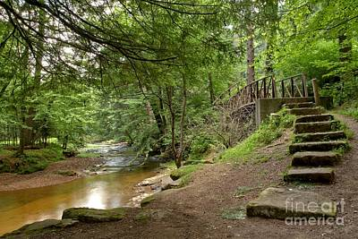 Photograph - Cook Forest Toms Run Steps by Adam Jewell