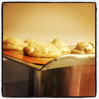 Photograph - Cookies On The Edge by Lexa Newman