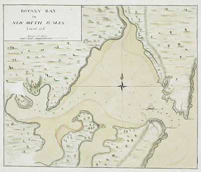 Cook's Map Of Botany Bay Art Print by British Library