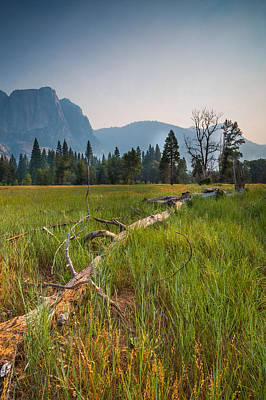 Photograph - Cook's Meadow by Mike Lee
