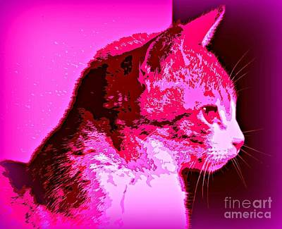 Art Print featuring the photograph Cool Cat by Clare Bevan