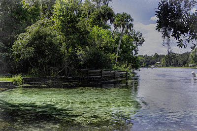 Dunnellon Photograph - Cool Clear Water by Judy Hall-Folde
