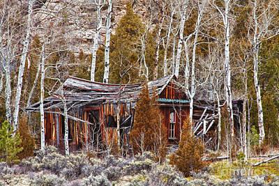 Cool Colorado Rural Rustic Rundown Rocky Mountain Cabin  Art Print by James BO  Insogna