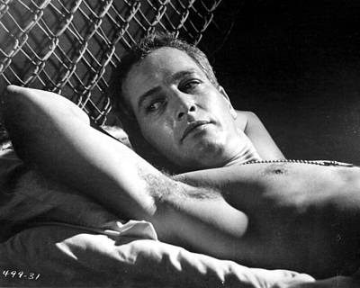 Newman Photograph - Cool Hand Luke  by Silver Screen