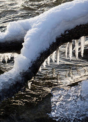 Photograph - Cool Icicles Reflecting In The Waves  by Georgia Mizuleva