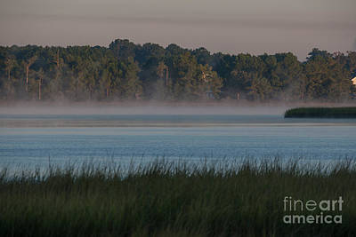 Photograph - Cool Lowcountry Morning by Dale Powell