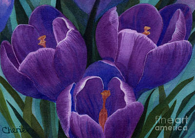 Cool Purple Crocus Art Print by Vikki Wicks
