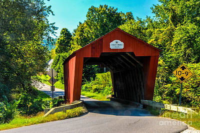 Photograph - Cooley Covered Bridge by Mary Carol Story