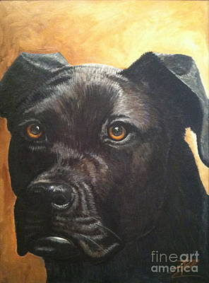Mixed Labrador Retriever Painting - Cooper by Ana Marusich-Zanor