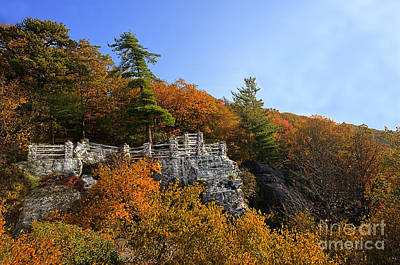 Photograph - Coopers Rock Overlook In The Fall by Dan Friend