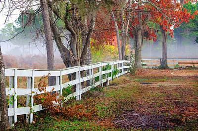 Coosaw Horse Fence Art Print by Scott Hansen