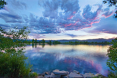 Corporate Art Photograph - Coot Lake View by James BO  Insogna