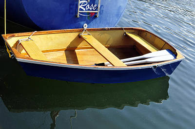 Photograph - Coot Little Dinghy by Tikvah's Hope