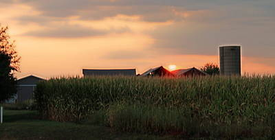 Photograph - Coountry Sunset by Victoria Sheldon