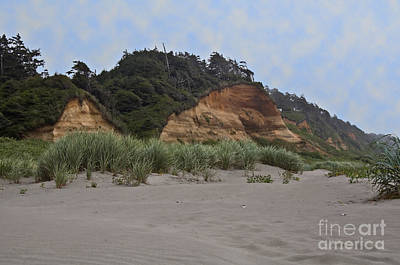 Photograph - Copalis Beach Washington Landscape by Valerie Garner