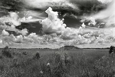Copeland Prairie Revisited Art Print