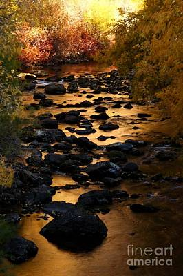 Photograph - Copper Creek V by Bill Singleton