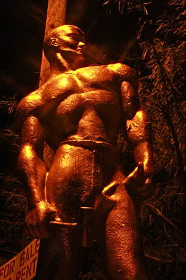 Gay Art Photograph - Copper Man by Angie Wingerd