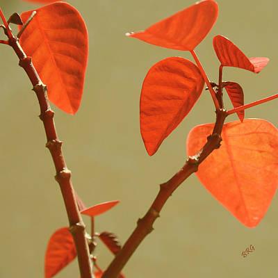 Copper Plant Art Print by Ben and Raisa Gertsberg