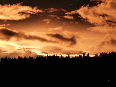 Photograph - Copper Sunset by Will Borden