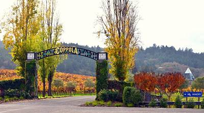 Coppola Winery Sold Print by Antonia Citrino