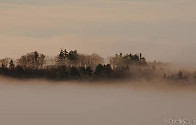 Photograph - Copps Hill Fog by Brenda Jacobs