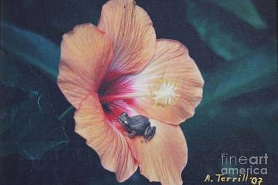 Coqui Photograph - Coqui  by The Art of Alice Terrill
