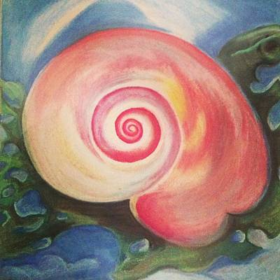 Wall Art - Pastel - Coquillage Sur Les Algues by Kerrie B Wrye
