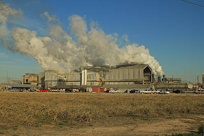 Photograph - Cora Texas Sugar Refinery by Ronald Olivier