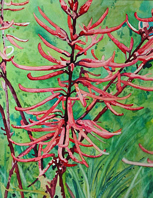 Painting - Coral Bean Flowers by Terry Holliday
