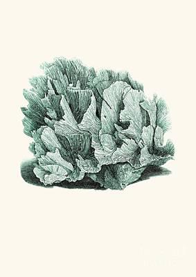 Coral Blue Art Print by Patruschka Hetterschij