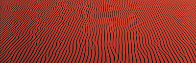Undulating Photograph - Coral Pink Sand Dunes State Park Ut Usa by Panoramic Images
