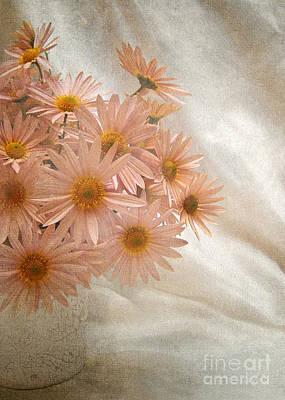 Coral Pink Still Life Art Print